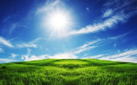 wallpapers-sky-clear-grasslands-hd-1280x800